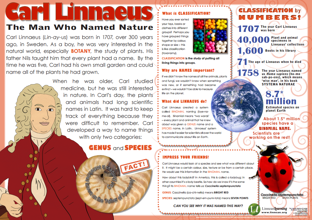 the historical context of carl linnaeus method of classification May 25th is the birthday of carl linnaeus, the most important man in history yes the facts on carl linnaeus - and why knowing things matters may 22, 2015 / laurie vazquez may 25th is the birthday of carl linnaeus, the most important man in history.